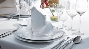 servicio-mesa-01